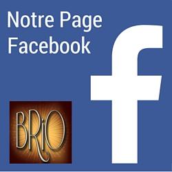 Page Facebook des BrioFolies